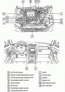 2002 Hyundai Elantra Engine Diagram