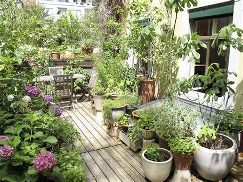 plante pour chambre à coucher le balcon sauvage la maison nature