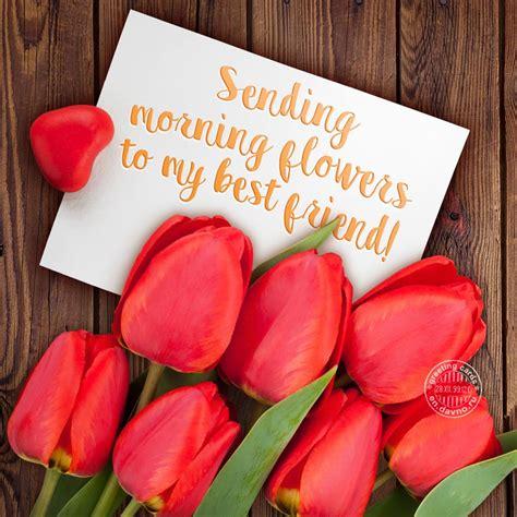 sending morning flowers    friend