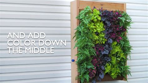 To Make A Vertical Garden Wall by How To Create A Vertical Wall Garden