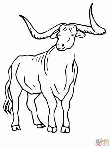 Texas Longhorn Coloring Online