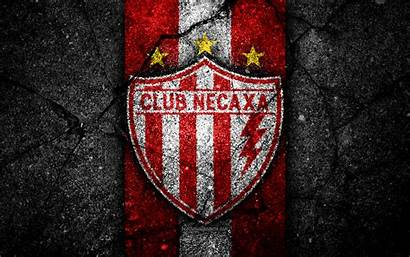 Necaxa Liga Mx Fc Football Club Soccer