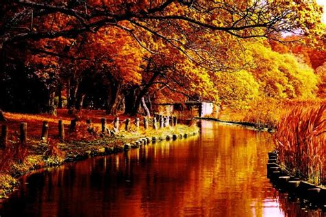 Autumn Windows Xp Wallpapers by Autumn Wallpapers For Desktop 183 Wallpapertag