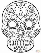 Coloring Skull Dead Sugar Printable Paper Muertos Dia Los Drawing Halloween Calavera sketch template