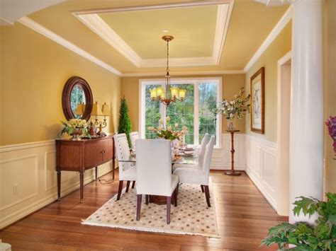 amazing dining room design ideas  tray ceiling