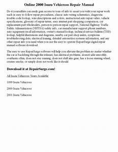 2000 Isuzu Vehicross Repair Manual Online By Nicole