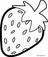 Strawberry Coloring Coloringall sketch template