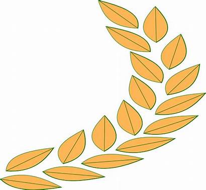 Greek Clip Leaf Clipart Cliparts Grecian Vector