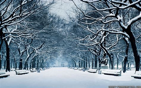 Hd Winter Photo by Winter Widescreen Wallpapers Hd Nature Hd Wallpaper