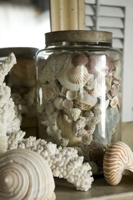 how to display shells ideas how to decorate with seashells 37 inspiring ideas digsdigs