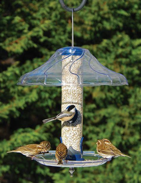 fancy bird feeders aspects fancy swirl tray as380 bird feeder