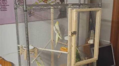 gabbie x uccelli usate calopsite voliera fatta in casa quot fai da te quot