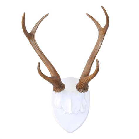Deer Antlers Wall Mount  White And Natural Antlers