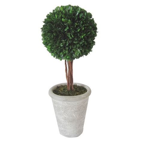 boxwood topiary large smith hawken target