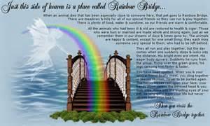 the rainbow bridge poem for cats rainbow bridge ragtime cattery
