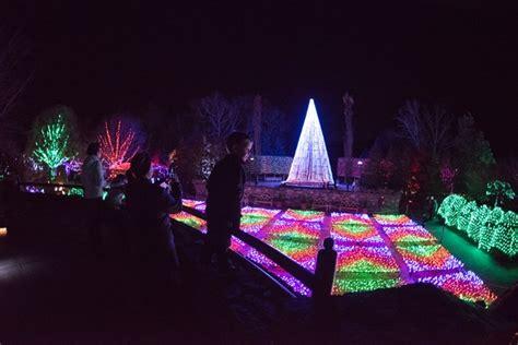 winter lights the carolina arboretum