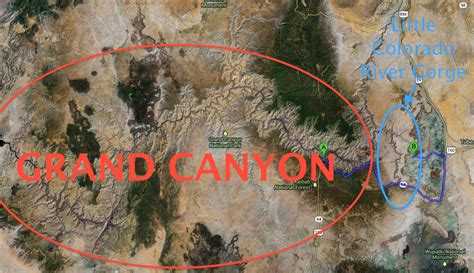 comment le funambule nik wallenda  traverse  canyon