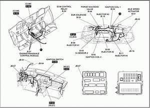 2001 Kia Rio Wiring Diagram  U2022 Wiring Diagram For Free