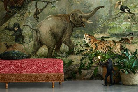 Animal Wall Murals Wallpaper - vintage animal wall mural feathr