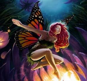 Mariposas Fantasía Vol 5 (20 Fotos) Imagenes y Carteles