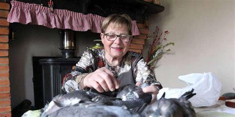 cuisiner la palombe les meilleures recettes landaises pour noël le salmis de
