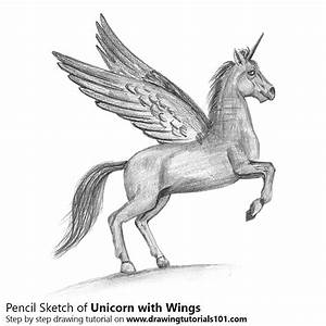 Unicorn with Wings Pencil Drawing - How to Sketch Unicorn ...