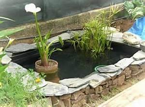Bac à Poisson Extérieur : bassin poisson jardin ~ Teatrodelosmanantiales.com Idées de Décoration
