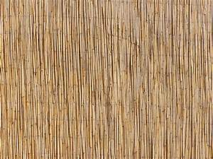 Free Straw mat texture Stock Photo - FreeImages com