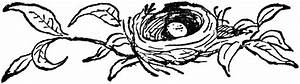 Spring Bird Nest Clipart - Clipart Suggest