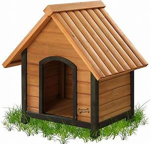 pet squeak arf frame dog house medium chewycom With chewy dog houses