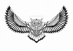 Outline Of An Owl - Cliparts.co