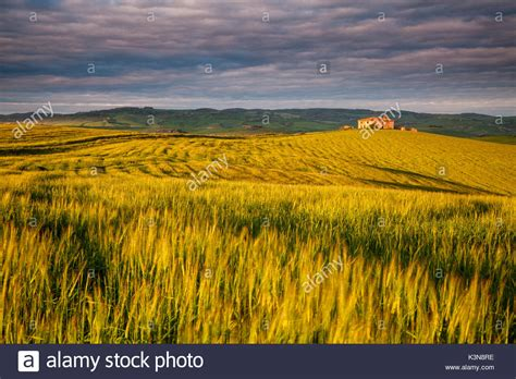 cottage italy cottage tuscany stock photos cottage tuscany stock