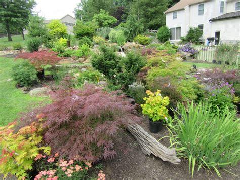 ornamental garden trees 10 best ornamental trees for southeastern pa gardens turpin landscaping