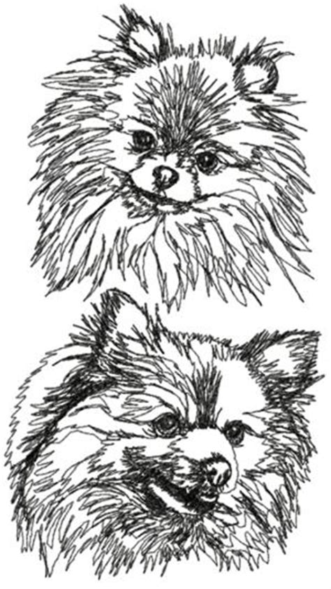 advanced embroidery designs pomeranian set