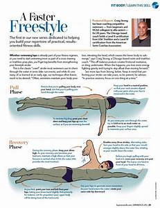 Image Result For Freestyle Swimming Technique Diagram