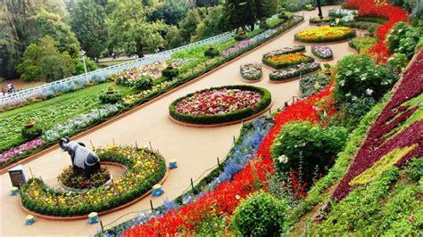 rose garden kerala india youtube