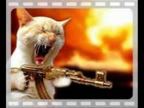 cat war cats with guns the motion picture the war between the