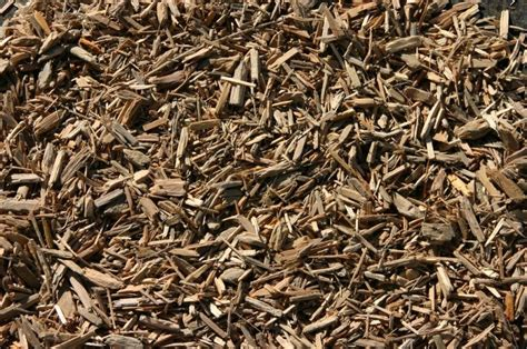 wood chip mulch playground wood chips diversified landscape co