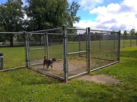 dog proofing  yard redundant fencing chain link air