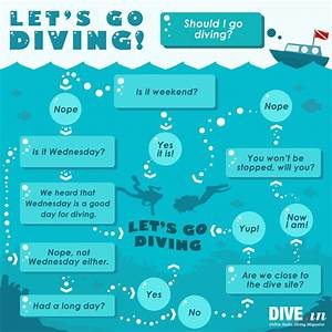 Should You Dive Or Not  Here U0026 39 S A Flow Diagram To Help You
