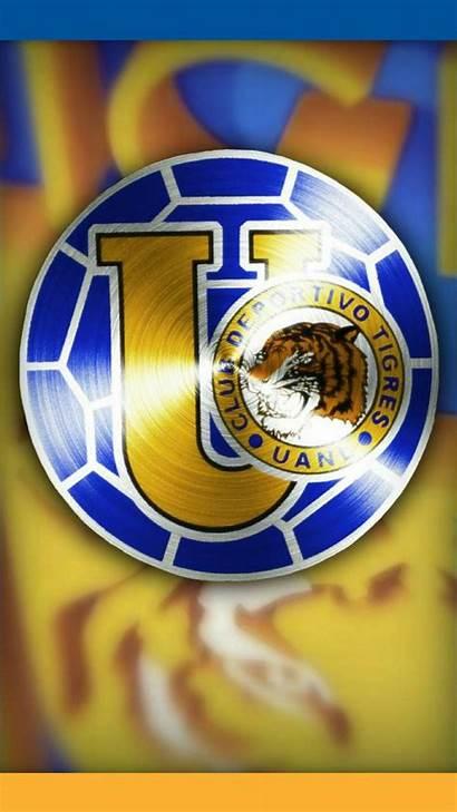 Tigres Uanl Incomparables Felinos
