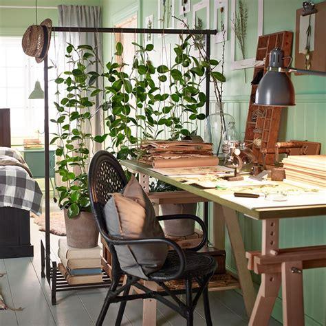 plantes de bureau jungle plante verte et mur vert couleur pastel