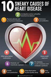 10 Sneaky Causes Of Heart Disease  Infographic