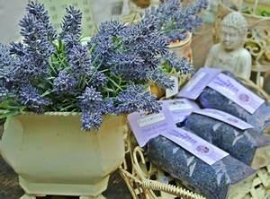 Lavendelöl Selber Machen : therisches lavendel l in seifen und kosmetik naturseife und kosmetik selber machen ~ Markanthonyermac.com Haus und Dekorationen