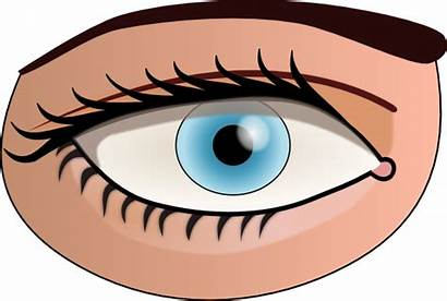 Eye Clip Clker Clipart Cliparts Svg