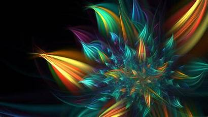 Multicolor Fractal Abstract Flower Wallpapers