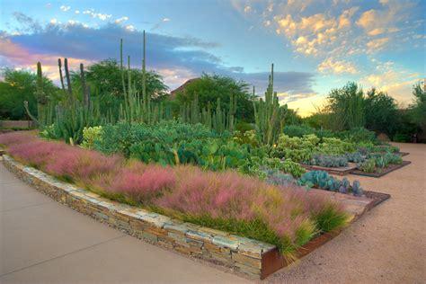 desert botanical garden phoenix scottsdale wheretraveler