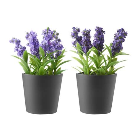poroest artificial potted plant  pot ikea