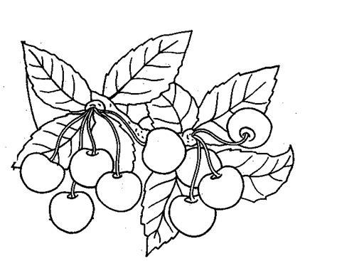 cuisine dessin dididou coloriage fruits cerise