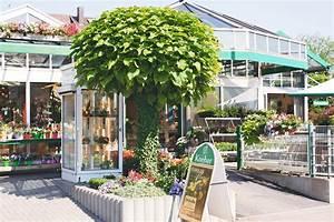 Blumen Kocher Ludwigsburg : start blumen kocher ~ Orissabook.com Haus und Dekorationen